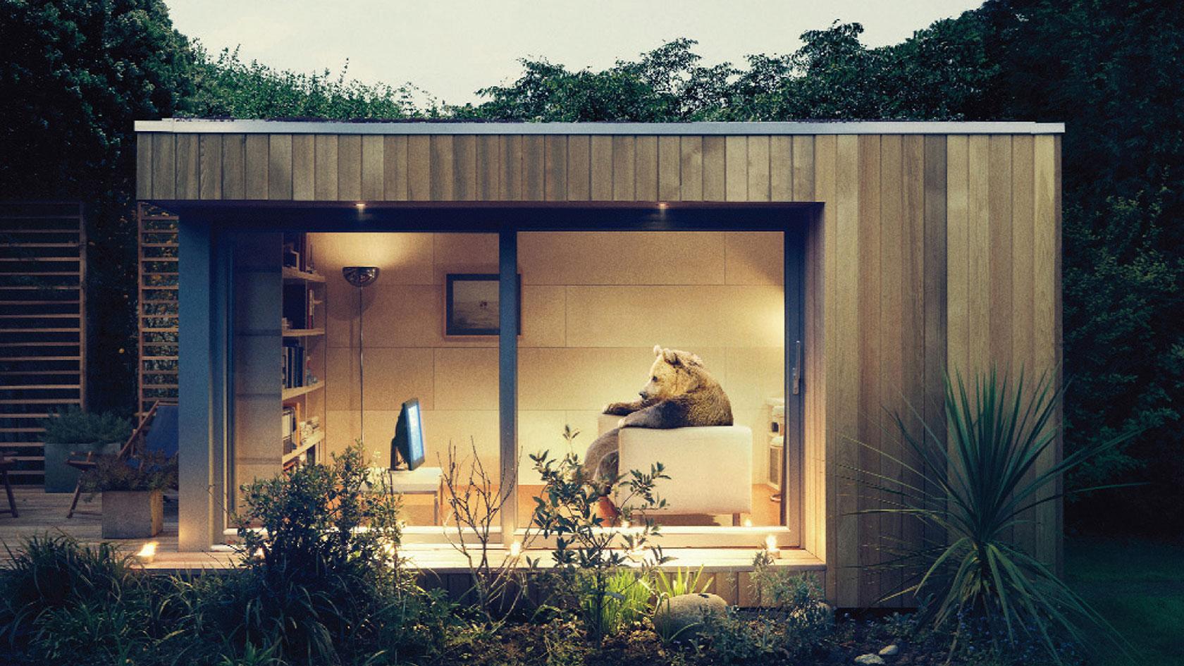 bear-ecospace